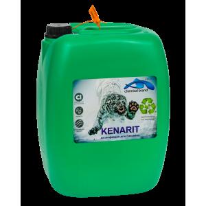 Кенарит, 30л